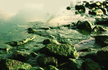 Scenic Nature Landscape Green Background With River Bank With Many Rocks In Moss And Algae Blooms, Harmful Environment