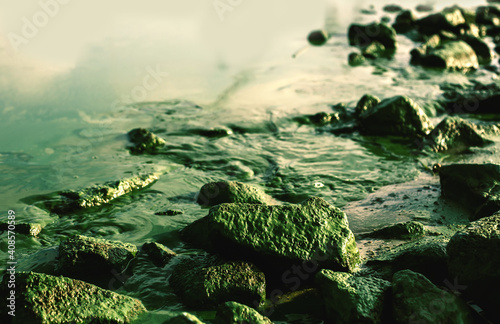 Scenic nature landscape green background with river bank with many rocks in moss Wallpaper Mural