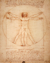 Leonardo DaVinci's Vitruvian Man, Uomo Vitruviano, Illustrated