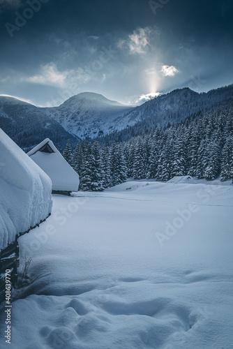Dolina Jaworzynki - Tatry #408639770