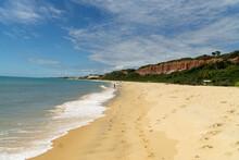Pitinga Beach Or Praia Pitinga One Of The Most Popular Beaches In Arraila D'Ajuda, Bahia, Brazil