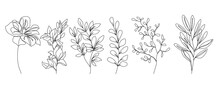 Flowers One Line Drawing Vector Set. Botanical Modern Single Line Art, Aesthetic Contour. Perfect For Home Decor, Wall Art Posters, Or T-shirt Print, Mobile Case. Continuous Line Drawing Of Flowers.