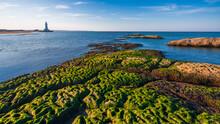 Lighthouse On The Seashore, Sea Scenery