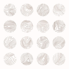Tree Ring, Wood Line Art. Vector Topography Illustration