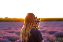 Portrait Of A Little Black Dog That Licks, In The Arms Of A Girl Who Looks At The Sunset. Happy Miniature Schnauzer. The Dog With The Owner Travels. Animal Love And Travel Concept