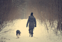 Dog And His Owner Walking In The Winter Forest