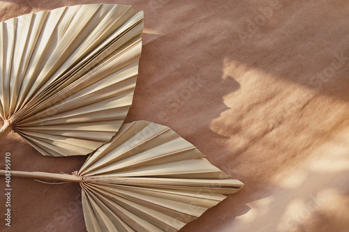 Fototapeta Minimal stationery still life. Dry palm leafs on craft paper. obraz