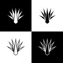 Set Agave Icon Isolated On Black And White Background. Traditional Mexican Plant. Vector.