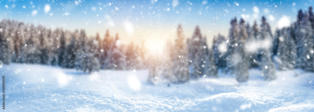 Fototapeta Winter landscape background and snow, frost wide panorama with free space for your text