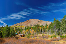 Sunny View With Beautiful Fall Color Along The Hope Valley In Lake Tahoe Area