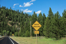 Moose Crossing Sign In Idaho