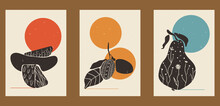 Vintage Illustrations Of Fruits. Set Of Three Posters For Menu Design, Restaurant Decor, Grocery Stores, Social Media. Minimalistic Backgrounds With Circles, Orange, Plum, Pear, Patterns.