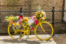 Yellow Bicycle Decorated With Flowers At The Canal In Gouda, Netherlands