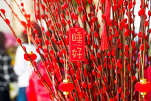 Lucky Knot Hanging On Flower For Chinese New Year Greeting,Chinese Character Means Sleep Well For New Year