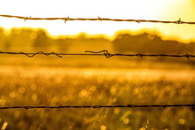 Barbed Wire On A Kansas Farm At Sunrise