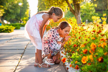 Cute Adorable Girls In Pink Delicate Dresses Sniff Wonderful Fiery Marigolds In A Bright Summer Park On A Sunny Day On A Long-awaited Vacation