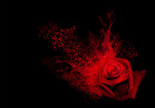 Red Rose With Smoke And Hearts Splash On A Black Background