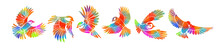A Multi-colored Flying Decorative Birds. Set Of Rainbow Stylized Birds. Vector Illustration