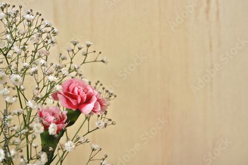 壁の前のカーネーションとカスミソウの花束 3 Fototapet