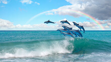 Group Of Dolphins Jumping On The Water Rainbow In The Background - Beautiful Seascape And Blue Sky