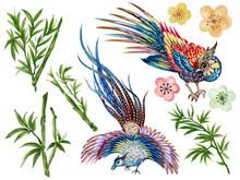 Hand Painting Watercolor Illustrationinspired By Phoenix Bird Asain Chinese Korean And Japan Kimono Cherry Sakura Blossom Bamboo