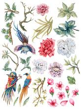 Hand Painting Watercolor Illustrationinspired By Phoenix Bird Asain Chinese Korean And Japan Kimono Chrysanthemum Peonies Flower Cherry Blossom