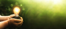 Hands Holding Illuminated Light Bulb Against Nature. Ecology Concept. Energy Sources For Renewable, Sustainable Development