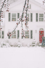 Red Berries On A Snow Day In New England With Beautiful House