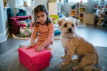 Girl And Dog Waiting To Open Presents On Christmas Morning