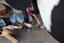 Female Rancher Cleaning Horse Hoof