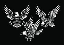 Set Of Eagle Illustration In Black Background.