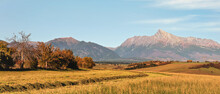 Mount Krivan Peak (Slovak Symbol) Wide Panorama With Autumn Harvested Field And Some Trees In Foreground, Typical Autumnal Scenery Of Liptov Region, Slovakia