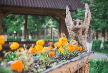 Shevchenkovo village, Ukraine, June 2018: Flower Pots In The Form Of Bird Carved From Wood