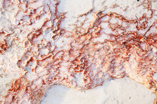 Background With The Texture Of Travertine's Surface (red Mineral Line Over The White Limestone - Like The Coral On The Sea Floor).