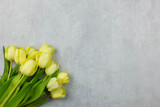 Fototapeta Tulipany - Greeting card flat lay with yellow tulip on grey concrete background. Top view on tender spring flowers. Copy space.