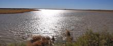 Rain Water Lake In The Desert Near Namutomi In The Etosha National Park