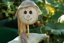 Closeup Shot Of A Lovely Scarecrow With A Happy Face In A Green Garden