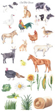 Watercolor Farm Animals And Botanical Elements Isolated On White Background. Sheep, Goat, Turkey, Donkey, Chicken, Chick, Horse, Rabbit. Domestic Animals. Watercolor Clipart