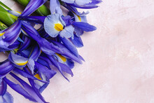 Blue Lilies Flower Background With Copy Space
