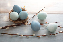 Tender Blue Easter Eggs With Pussy Willow On Gray Vintage Planks. Background For Easter Greetings.