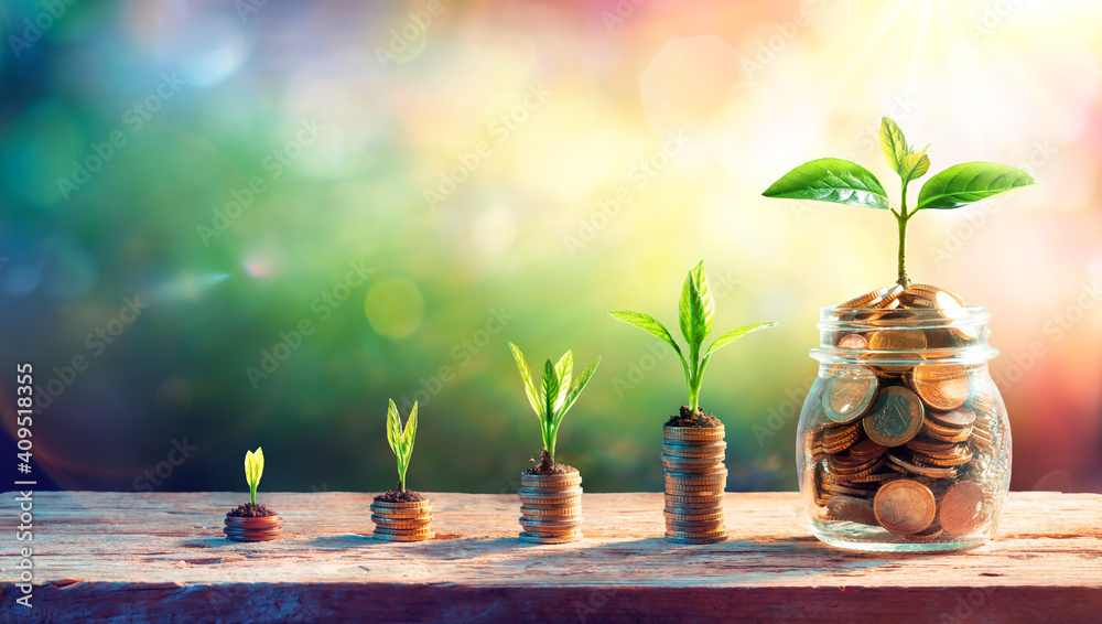 Fototapeta Plants On Money In Increase With Flare Light Effects - Money Growth Concept