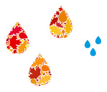 Water Drops Mosaic Icon Combined For Fall Season. Vector Water Drops Mosaic Is Done With Randomized Fall Maple And Oak Leaves. Mosaic Autumn Leaves In Bright Gold, Brown And Red Colors.