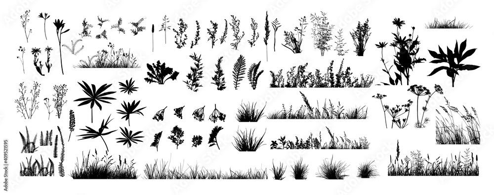 Fototapeta The silhouette of the grass set. Vector illustration