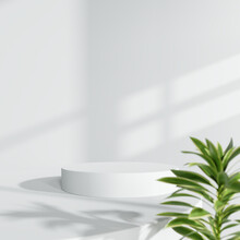 White Product Display Podium With Blurred Green Plant. 3D Rendering