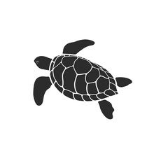 Vector Of Turtle Design On White Background. Easy Editable Layered Vector Illustration. Wild Animals.