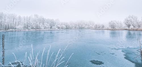 Fotografie, Obraz Frozen lake in snowy forest landscape