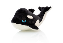 Killer Whale Plushie Doll Isolated On White Background With Shadow Reflection. Plush Stuffed Orca  On White Backdrop. Fluffy Puppet Toy For Children. Cute Furry Plaything For Kids. Black Fish.