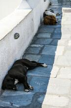 Santorini In Greece In The Long Hot Summer