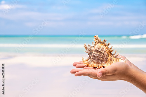 Kids hand holding large sea shell on blue sky and ocean background, tropical sum Wallpaper Mural