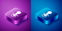 Isometric Baby Dummy Pacifier Icon Isolated On Blue And Purple Background. Toy Of A Child. Square Button. Vector.